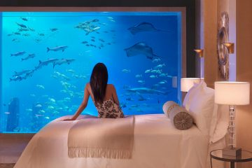 fish tank in bedroom