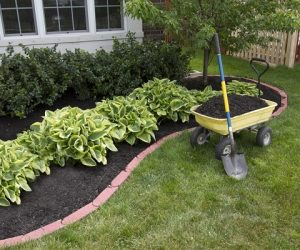Easy-Landscaping